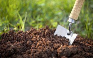 Organics fertilizers